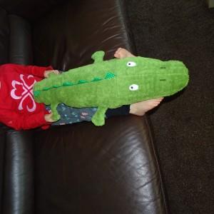 Krokodil (2)